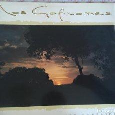 Discos de vinilo: LP LOS GOFIONES-TE LO VOY A DECIR CANTANDO. Lote 87168512