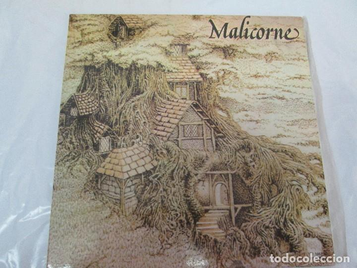 Discos de vinilo: MALICORNE. ALMANACH... TRES DISCOS VINILO. VER FOTOGRAFIAS ADJUNTAS - Foto 10 - 94131330