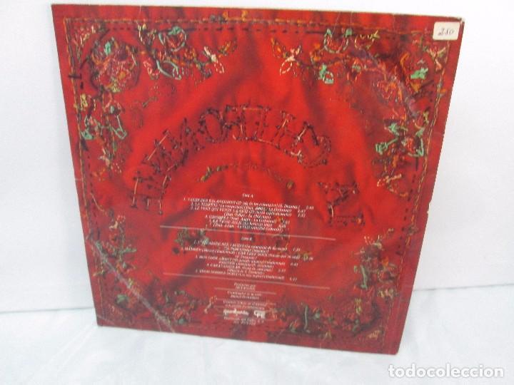 Discos de vinilo: LA CHIFONNIE. DISCO DE VINILO. GUIMBARDA 1979. VER FOTOGRAFIAS ADJUNTAS - Foto 9 - 94194245