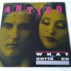 Disques de vinyle: ANTICO - WHAT I GOTTA DO. Lote 94828423