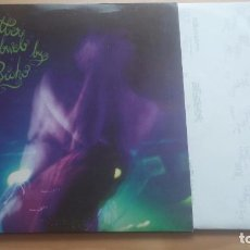 Discos de vinilo: EL BICHO – A GLITTER COBWEB. LP. Lote 211580132