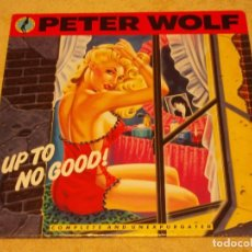 Discos de vinilo: PETER WOLF ( UP TO NO GOOD ) USA 1990-GERMANY LP33 MCA RECORDS. Lote 96982019