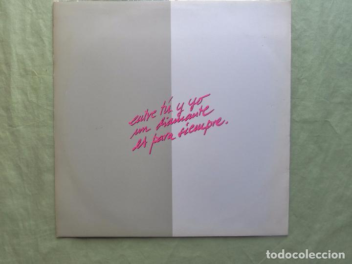 Discos de vinilo: EL NORTE. ENTRE TÚ Y YO UN DIAMANTE ES PARA SIEMPRE. CBS, 1988. ESPAÑA - MAXI SINGLE VINILO - - Foto 2 - 97323099