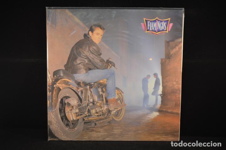 FLAMINGOS - EN LA CALLE - LP (Música - Discos - LP Vinilo - Grupos Españoles de los 90 a la actualidad)