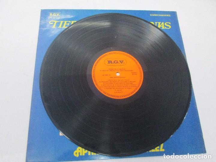 Discos de vinilo: TIERRA DE GUARANIAS. FLORENTIN GIMENEZ SU GRAN ORQUESTA. ARPA DE APARICIO GONZALEZ. LP VINILO 1979 - Foto 5 - 98589195