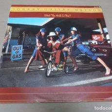 Discos de vinilo: JOHNNY GUITAR WATSON (LP) WHAT THE HELL IS THIS? AÑO 1979 – EDICION PROMOCIONAL. Lote 99881907