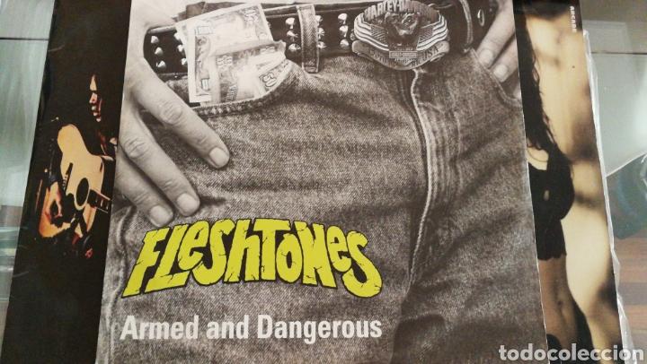 THE FLESHTONES ARMED AND DANGEROUS MAXI 1991 UK (Música - Discos de Vinilo - Maxi Singles - Pop - Rock - New Wave Extranjero de los 80)