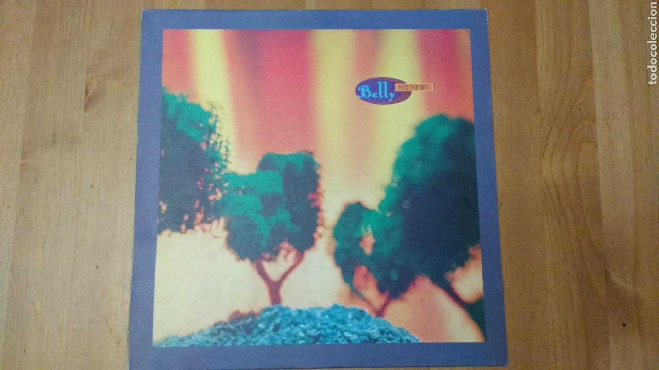 BELLY -FEED THETREE- (Música - Discos de Vinilo - Maxi Singles - Pop - Rock Extranjero de los 90 a la actualidad)