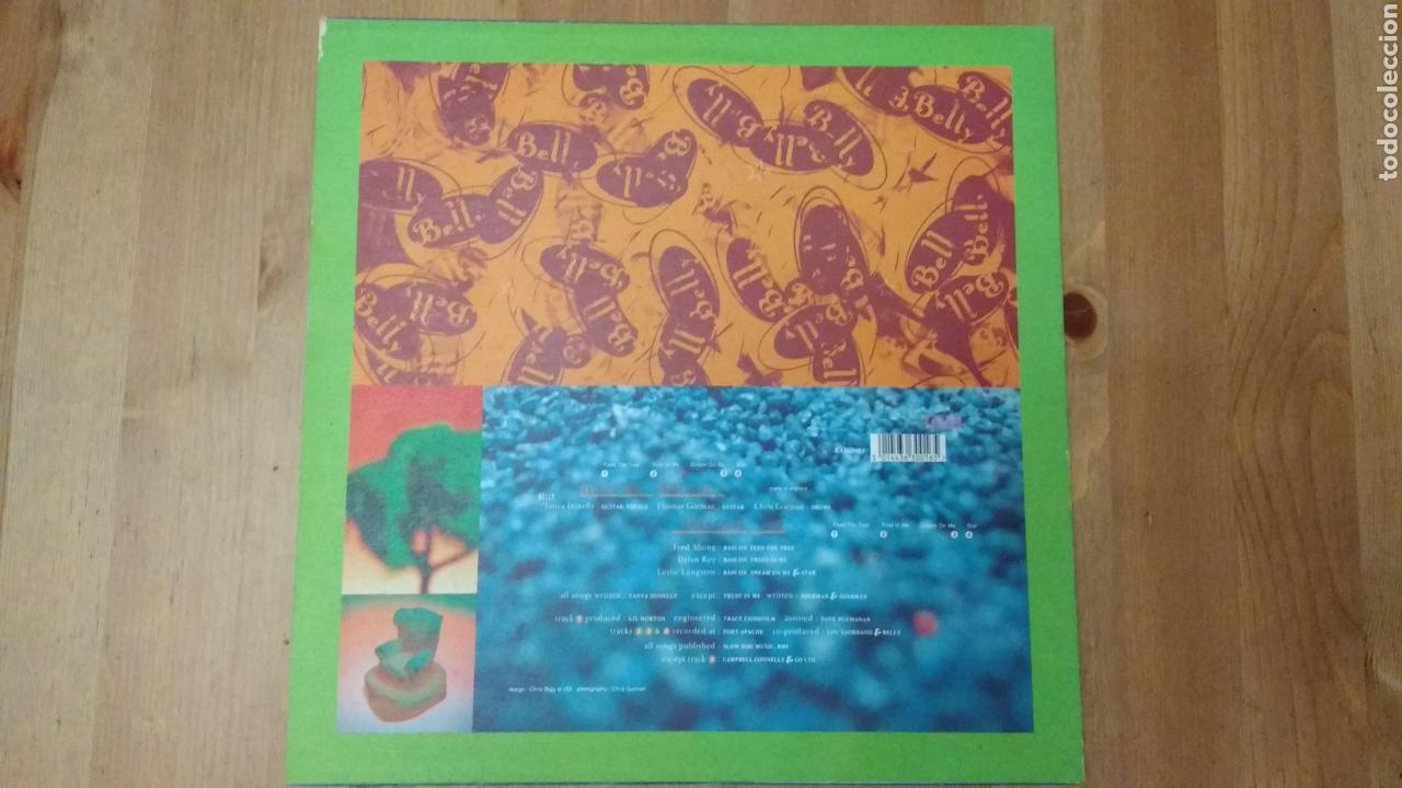 Discos de vinilo: Belly -Feed TheTree- - Foto 2 - 102778246