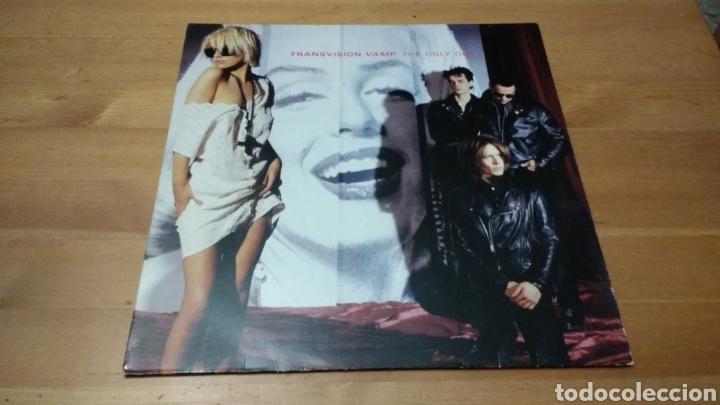 Discos de vinilo: Transvision Vamp -Lote lp's y maxis- - Foto 6 - 102792314