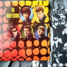 Discos de vinilo: THE HONEYCOMBS. LP EDICIÓN ESPAÑOLA 1980. Lote 103998695