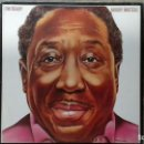 Discos de vinilo: MUDDY WATERS -I'M READY- LP 1978 BLUE SKY USA. Lote 105811359