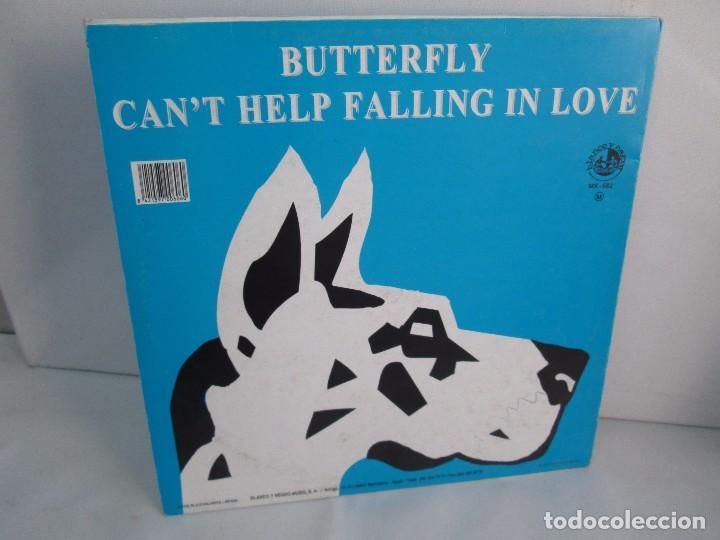Discos de vinilo: BUTTERFLY. CAN´T HELP FALLING IN LOVE. EP VINILO BLANCO Y NEGRO 1995. VER FOTOGRAFIAS ADJUNTAS - Foto 8 - 106922927