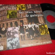 Discos de vinilo: REAL CORO GALLEGO TOXOS E FROLES O GALOPIN/OS TEUS OLLOS 7'' SINGLE 1971 ARIOLA SPAIN ESPAÑA GALIZA. Lote 107085283