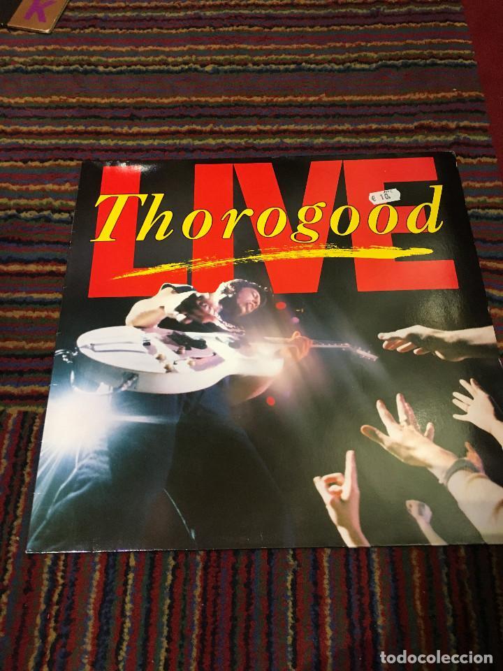 GEORGE THOROGOOD & THE DESTROYERS - LIVE - LP (Música - Discos - LP Vinilo - Pop - Rock Internacional de los 90 a la actualidad)