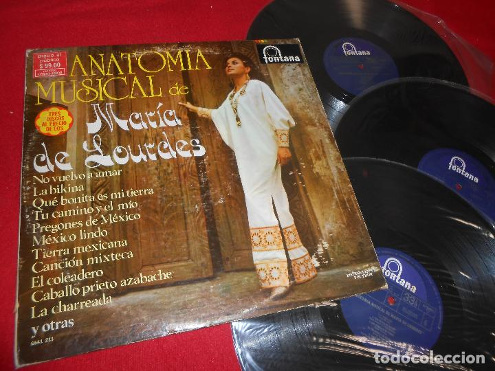 maria de lourdes anatomia musical de maria de l - Comprar Discos LP ...