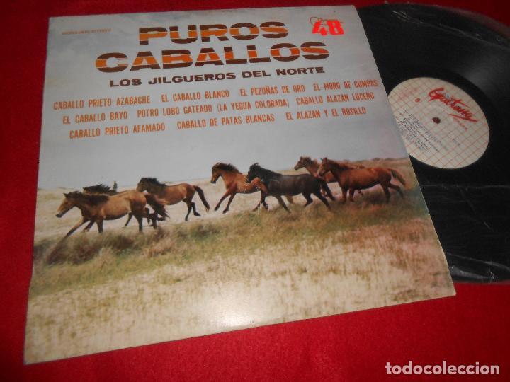 Los Jilgueros Del Norte Puros Caballos Lp 1977 Comprar Discos Lp