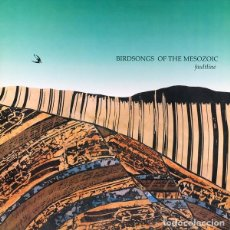 Discos de vinilo: BIRDSONGS OF THE MESOZOIC – FAULTLINE - CUNEIFORM RECORDS RUNE 19 '89 COMO NUEVO.. Lote 114042819