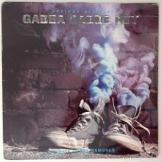 Discos de vinilo: RAMONES TRIBUTE GABBA GABBA HEY 2LP L7 BAD RELIGION JEFF DAHL WHITE FLAG. Lote 114588167