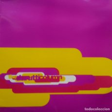 Discos de vinilo: THE DURUTTI COLUMN- OBEY THE TIME - SPAIN LP 1990+ INSERT- VINILO EXC. ESTADO.. Lote 114973915