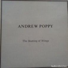 Discos de vinilo: ANDREW POPPY- THE BEATING OF WINGS - UK LP 1985+ INSERT- VINILO EXC. ESTADO.. Lote 114979267