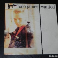 Discos de vinilo: VENDO SINGLE DE HALO JAMES (WANTED), AÑO 1989 (MAS INFORMACIÓN EN 2ª FOTO EN EL INTERIOR).. Lote 115399363