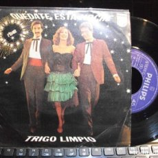 Discos de vinilo: TRIGO LIMPIO QUEDATE ESTA NOCHE -EUROVI. SINGLE SPAIN 1980 PDELUXE. Lote 119479839