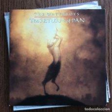 Discos de vinilo: WATERBOYS - THE RETURN OF PAN - SINGLE GEFFEN UK 1993. Lote 119866911