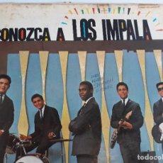 Discos de vinilo: LP COLECCION - CONOZCA A LOS IMPALA - DISCOS VELVET CARACAS - AÑOS 60. Lote 119941815