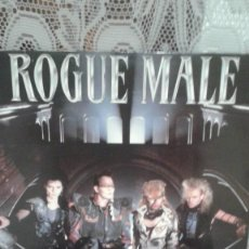Discos de vinilo: ROGUE MALE ANIMAL MAN. Lote 121824359