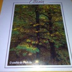 Discos de vinilo: CITANIA - O ASUBÍO O PADRIÑO. Lote 121876123