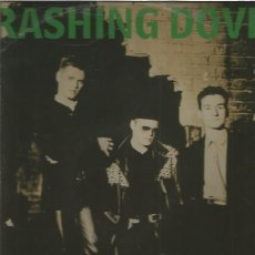Discos de vinilo: TRASHING DOVES BEAUTIFUL. Lote 123020699