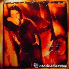 Discos de vinilo: ROGER HODGSON, HAI HAI, LP SPAIN 1987. Lote 127484659