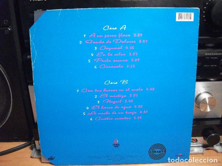 Discos de vinilo: JUAN PERRO RAICES AL VIENTO LP SPAIN 1995 PEPETO TOP - Foto 2 - 127876171