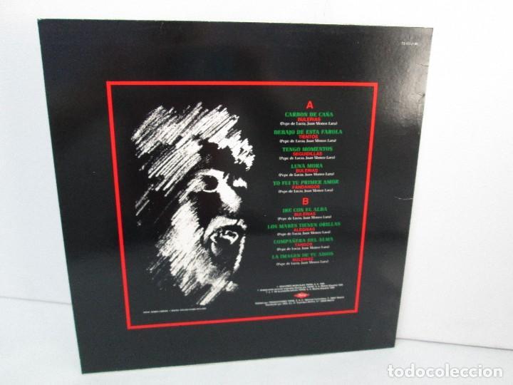 Discos de vinilo: JUAN MONEO EL TORTA. LUNA MORA. NUEVA ANTOLOGIA DEL FLAMENCO. LP VINILO. TWINS 1989. VER FOTOS - Foto 6 - 128947159