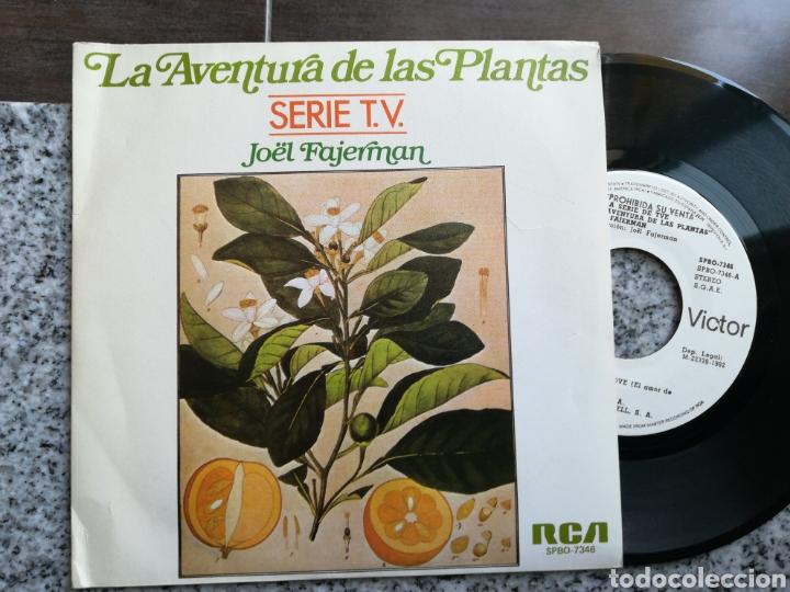 JOEL FAJERMAN SINGLE PROMOCIONAL LA AVENTURA DE LAS PLANTAS FLOWER'S LOVE ESPAÑA 1982 + HOJA PROMO (Música - Discos - Singles Vinilo - Bandas Sonoras y Actores)