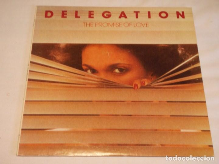 DELEGATION ( THE PROMISE OF LOVE ) USA-1977 LP33 STATE RECORDS (Música - Discos - LP Vinilo - Funk, Soul y Black Music)