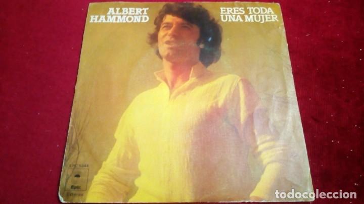 ALBERT HAMMOND - ERES TODA UNA MUJER (Música - Discos de Vinilo - EPs - Otros estilos)