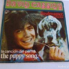 Discos de vinilo: DAVID CASSIDY - DAYDREAMER , SOÑADOR - THE PUPPY SONG , LA CANCIÓN DEL PERRITO 1973. Lote 139478774