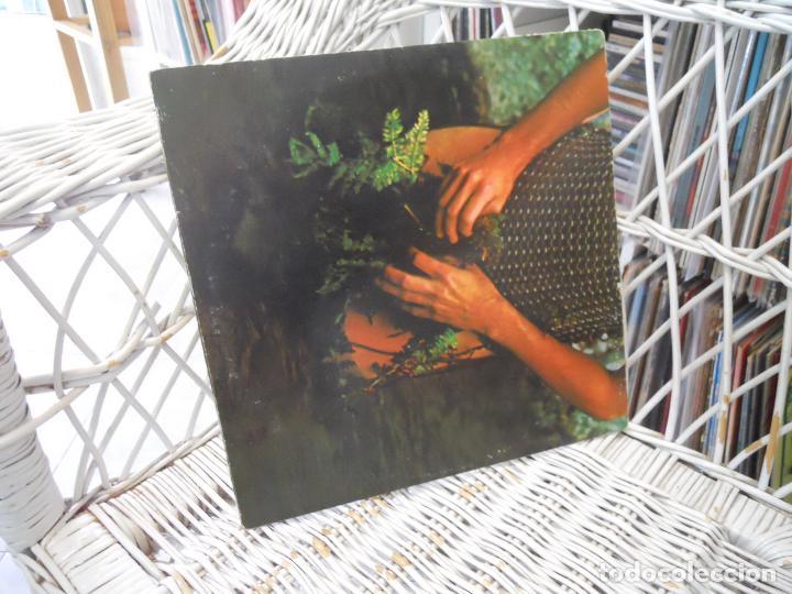 Discos de vinilo: Lee Michaels – Recital .lp original usa 1969.carpeta abierta.Psychedelic Rock - Foto 3 - 140994594
