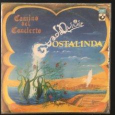 Discos de vinilo: GUADALQUIVIR - CAMINO DEL CONCIERTO. Lote 141485730