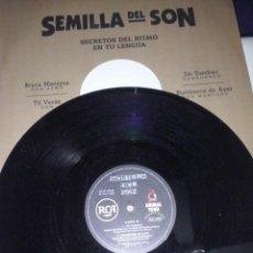 Discos de vinilo: MUSICA MAXI VINYL: SEMILLA DEL SON. ED ESPAÑOLA 1.997. SON/ SON AFRICANO (ABLN). Lote 145362226