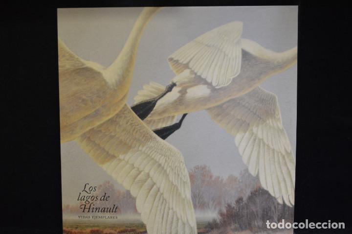 LOS LAGOS DE HINAULT - VIDAS EJEMPLARES - LP (Música - Discos - LP Vinilo - Grupos Españoles de los 90 a la actualidad)
