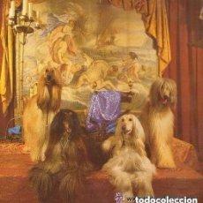 Discos de vinilo: LOCO MIA - PARTY TIME- OBSESIVA (ABGEFAHRN), MAXI-SINGLE HISPAVOX SPAIN 1993. Lote 147699094