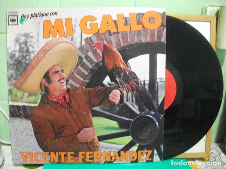 Vicente Fernandez Hoy Platique Con Mi Gallo Lp Vendido