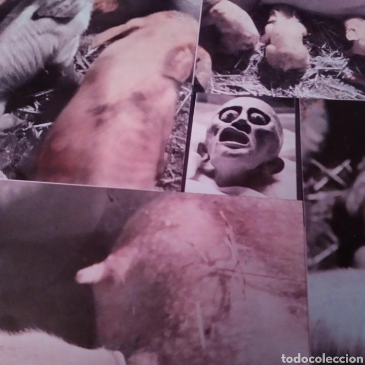 Discos de vinilo: THE DAMNED. STRAWBERRIES LP AÑO 1986 - Foto 4 - 149639357