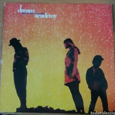 Discos de vinilo: DREAM ACADEMY. A DIFFERENT KIND OF WEATHER. REPRISE RECORDS, GEEMANY, 1990.. Lote 151295372