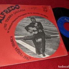Discos de vinilo: ALFREDO MI TIERRA GALLEGA/MI VIEJA BARCA SINGLE 1968 PHILIPS FESTIVAL HISPANO PORTUGUES MIÑO GALIZA. Lote 151582950