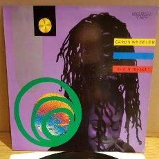 Discos de vinilo: CARON WHEELER / LIVIN' IN TE LIGHT / MAXI-SG - RCA - 1990 / MBC. ***/***. Lote 151931474