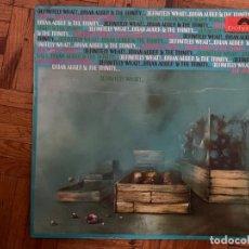 Discos de vinilo: BRIAN AUGER & THE TRINITY ?– DEFINITELY WHAT! SELLO: POLYDOR ?– 184 182 FORMATO: VINYL, LP, ALBUM . Lote 152896002